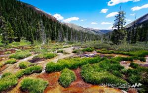 Geneva Creek Basin