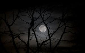 Full Moon Hiding