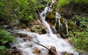 Lush Green Falls